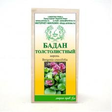 Бадан толстолистный (корень)