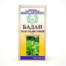 Бадан толстолистный (лист)